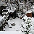 Garden_snow_x800